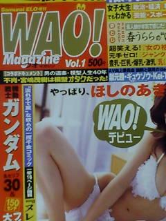 『WAO! マガジン増刊号』